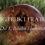 Dårlig frukt fra Bethel, del 1: Bibelen i baksetet