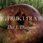 Dårlig frukt fra Bethel, del 3: Diagnose